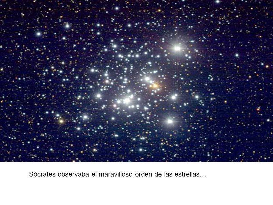 Sócrates observaba el maravilloso orden de las estrellas…