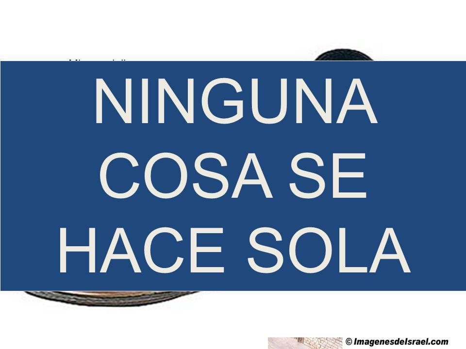 NINGUNA COSA SE HACE SOLA