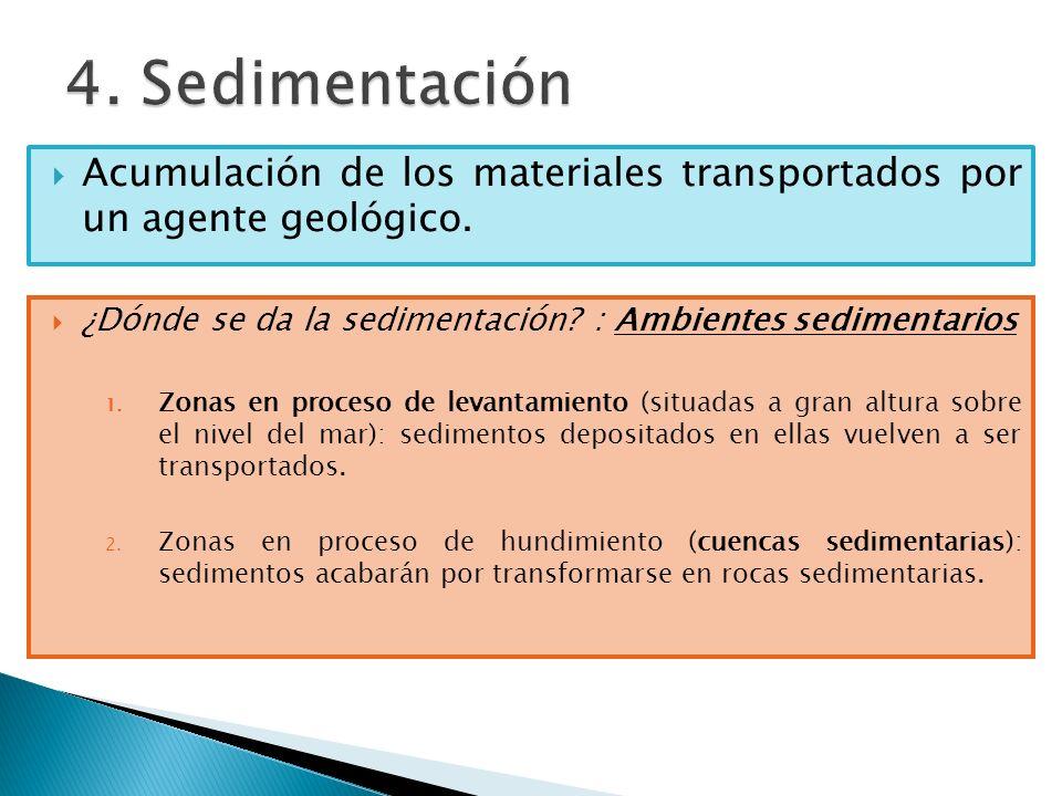 4. Sedimentación Acumulación de los materiales transportados por un agente geológico. ¿Dónde se da la sedimentación : Ambientes sedimentarios.