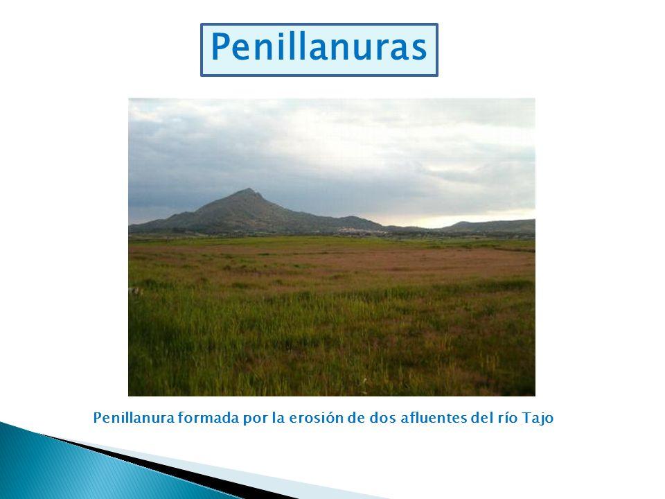 Penillanuras Penillanura formada por la erosión de dos afluentes del río Tajo