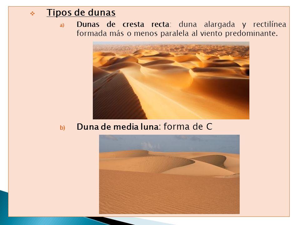 Tipos de dunas Duna de media luna: forma de C