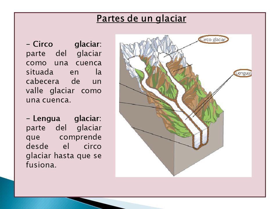 Partes de un glaciar Circo glaciar: parte del glaciar como una cuenca situada en la cabecera de un valle glaciar como una cuenca.