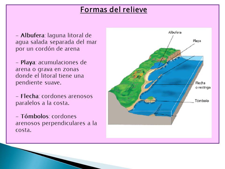 Formas del relieve Albufera: laguna litoral de agua salada separada del mar por un cordón de arena.