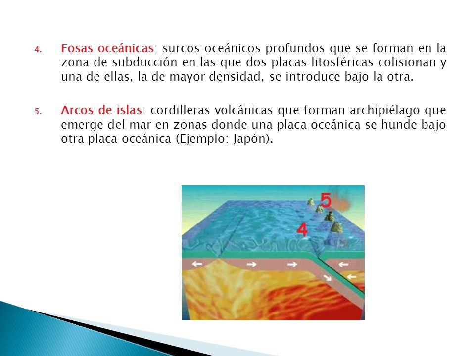 Fosas oceánicas: surcos oceánicos profundos que se forman en la zona de subducción en las que dos placas litosféricas colisionan y una de ellas, la de mayor densidad, se introduce bajo la otra.