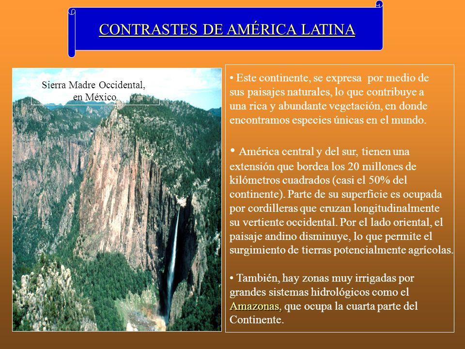 CONTRASTES DE AMÉRICA LATINA