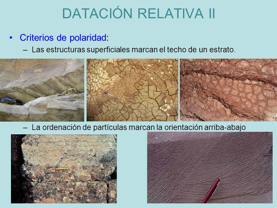 DATACIÓN RELATIVA II Criterios de polaridad: