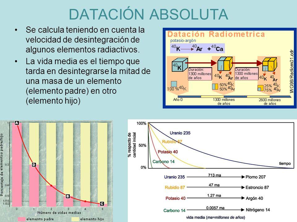 DATACIÓN ABSOLUTA Se calcula teniendo en cuenta la velocidad de desintegración de algunos elementos radiactivos.