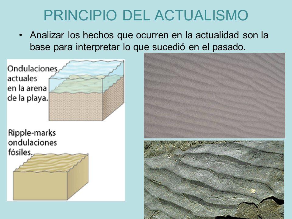 PRINCIPIO DEL ACTUALISMO