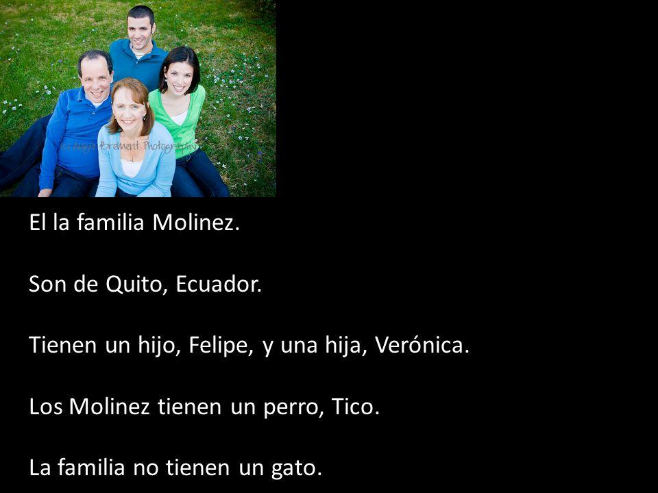 El la familia Molinez. Son de Quito, Ecuador. Tienen un hijo, Felipe, y una hija, Verónica. Los Molinez tienen un perro, Tico.