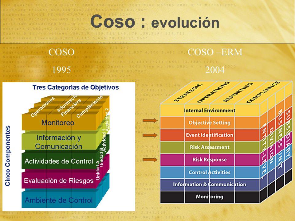 Coso : evolución COSO 1995 COSO –ERM 2004