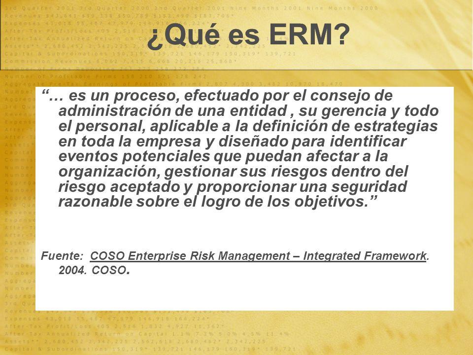 ¿Qué es ERM