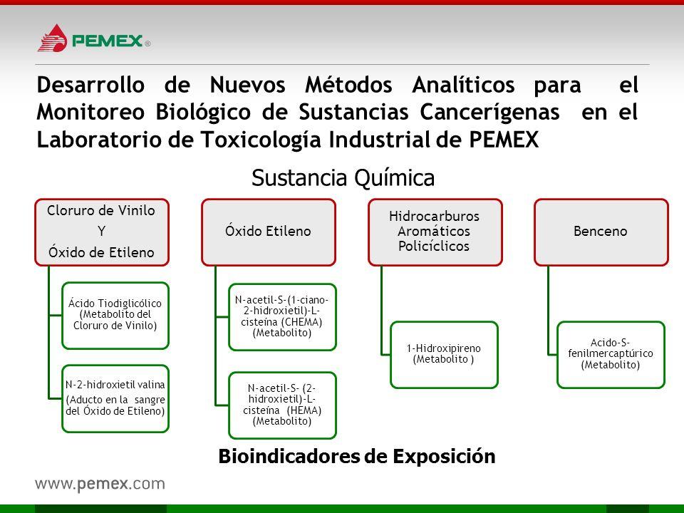 Bioindicadores de Exposición