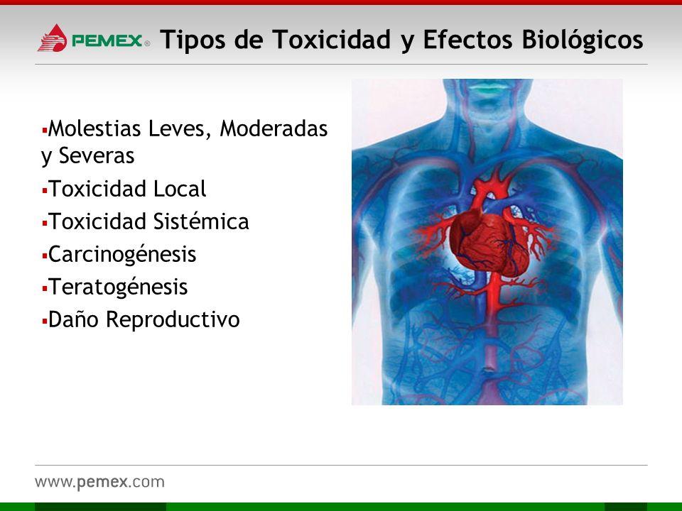 Tipos de Toxicidad y Efectos Biológicos