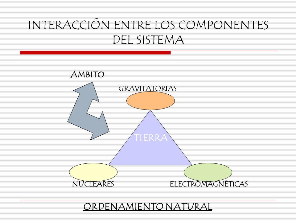 INTERACCIÓN ENTRE LOS COMPONENTES DEL SISTEMA