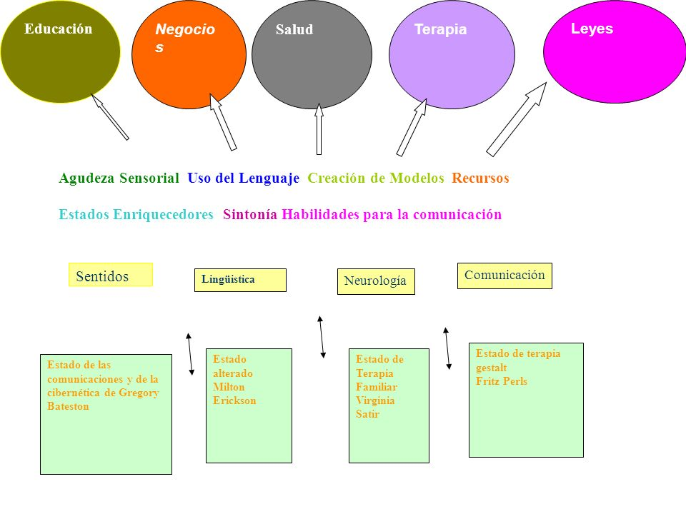 Agudeza Sensorial Uso del Lenguaje Creación de Modelos Recursos