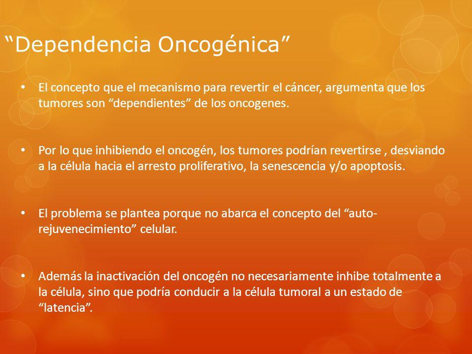 Dependencia Oncogénica