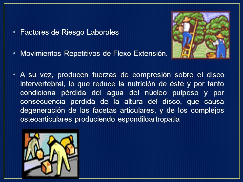 Factores de Riesgo Laborales