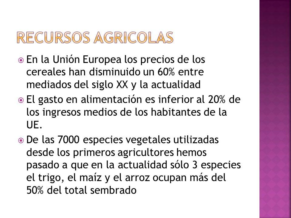 RECURSOS AGRICOLASEn la Unión Europea los precios de los cereales han disminuido un 60% entre mediados del siglo XX y la actualidad.