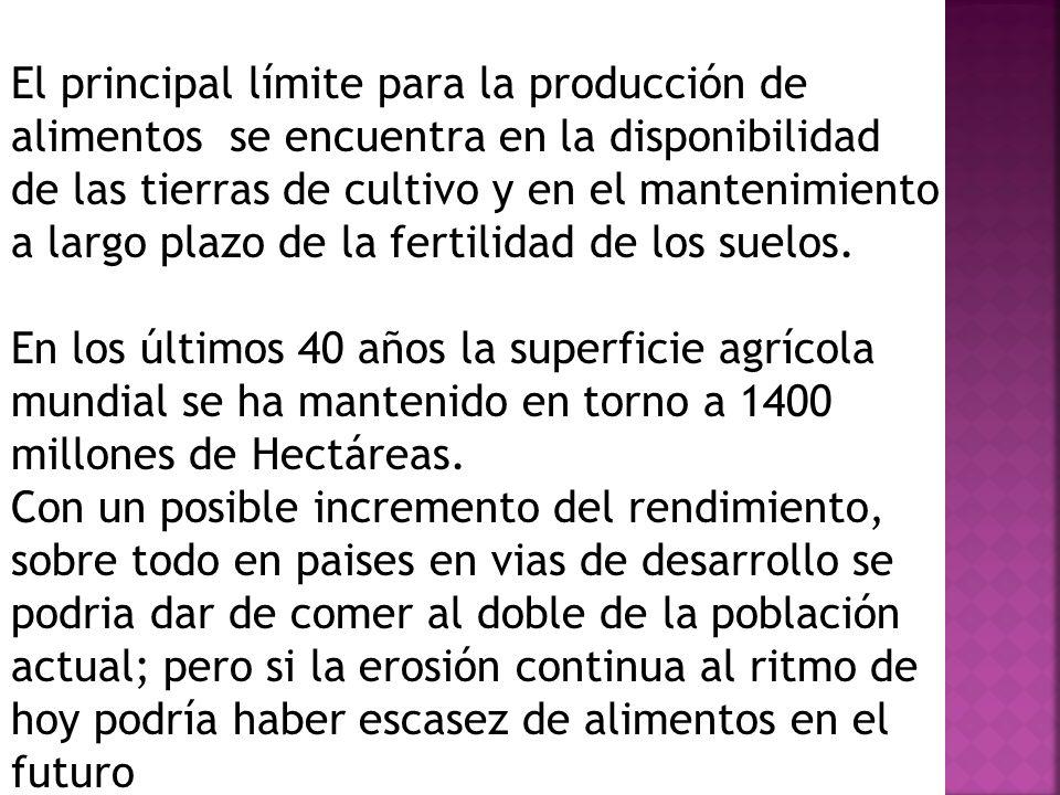 El principal límite para la producción de alimentos se encuentra en la disponibilidad de las tierras de cultivo y en el mantenimiento a largo plazo de la fertilidad de los suelos.