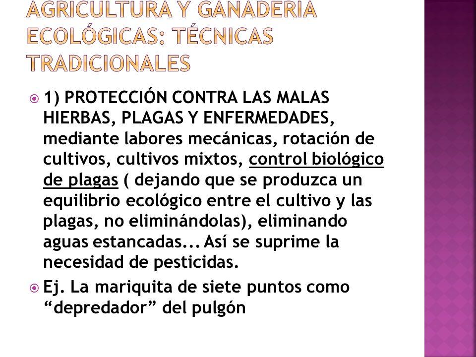 AGRICULTURA Y GANADERÍA ECOLÓGICAS: técnicas tradicionales
