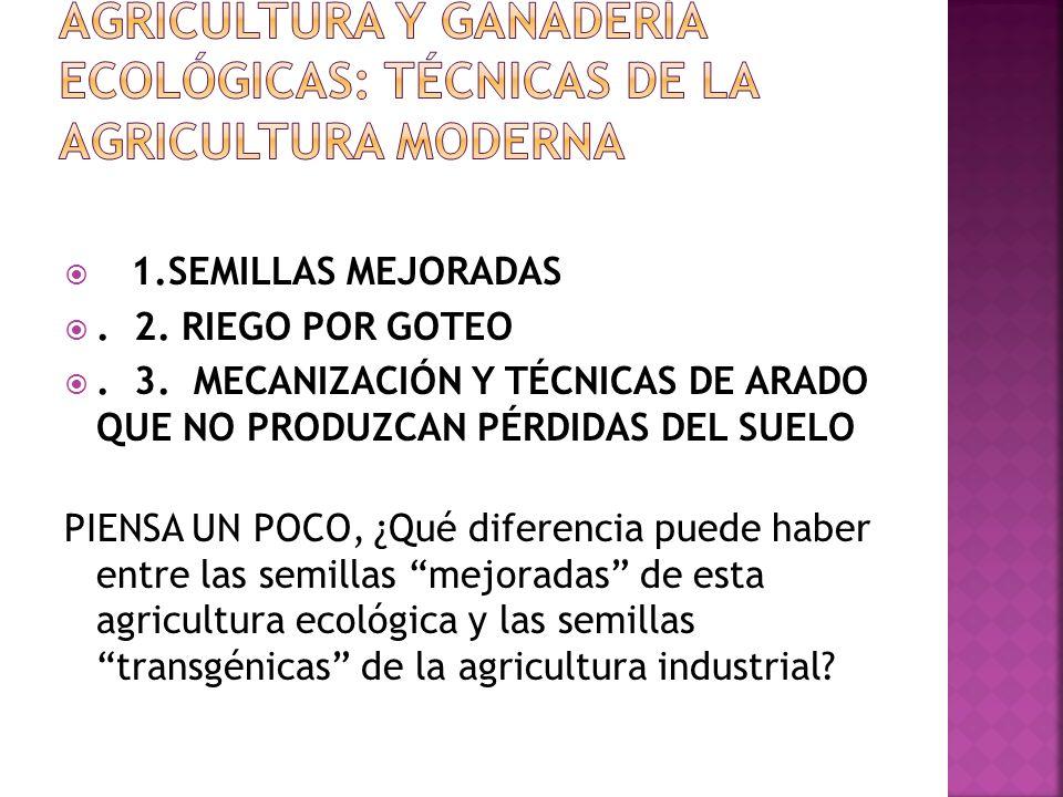 AGRICULTURA Y GANADERÍA ECOLÓGICAS: técnicas de la agricultura moderna