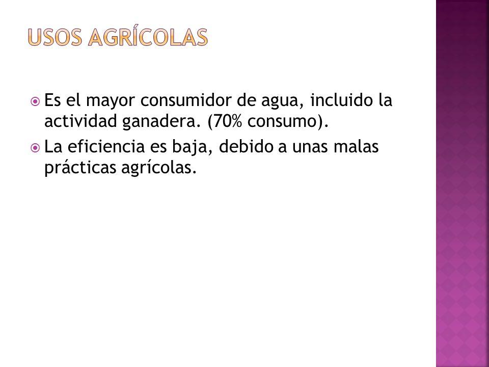 Usos agrícolas Es el mayor consumidor de agua, incluido la actividad ganadera. (70% consumo).