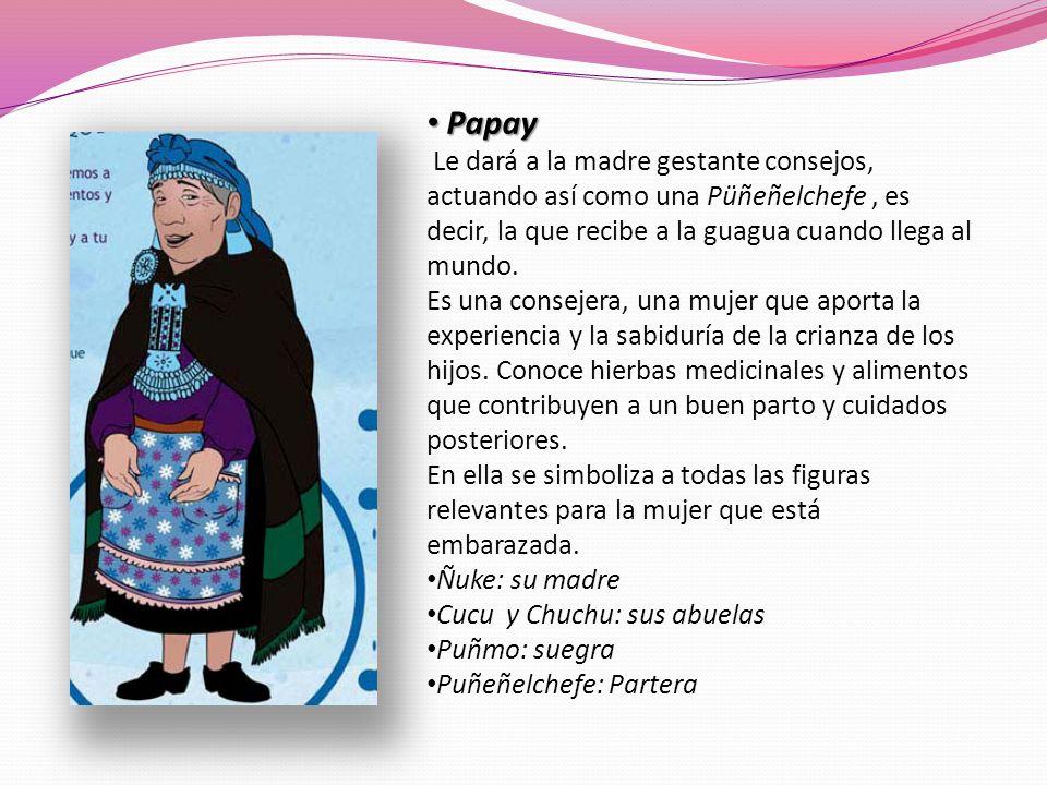 PapayLe dará a la madre gestante consejos, actuando así como una Püñeñelchefe , es decir, la que recibe a la guagua cuando llega al mundo.