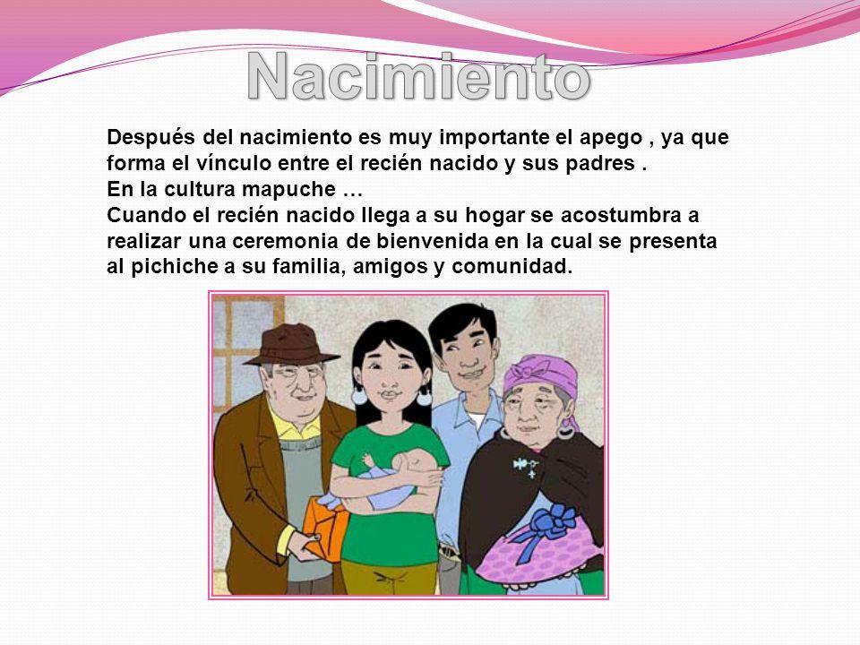 Nacimiento Después del nacimiento es muy importante el apego , ya que forma el vínculo entre el recién nacido y sus padres .