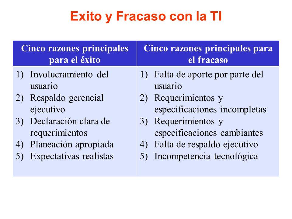 Exito y Fracaso con la TI