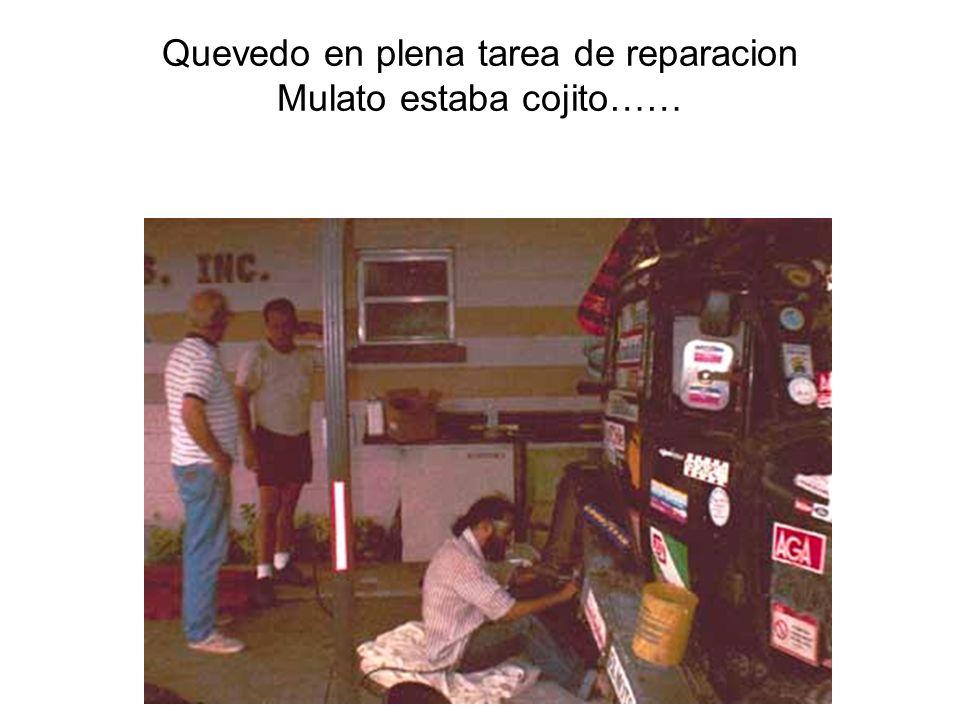 Quevedo en plena tarea de reparacion Mulato estaba cojito……