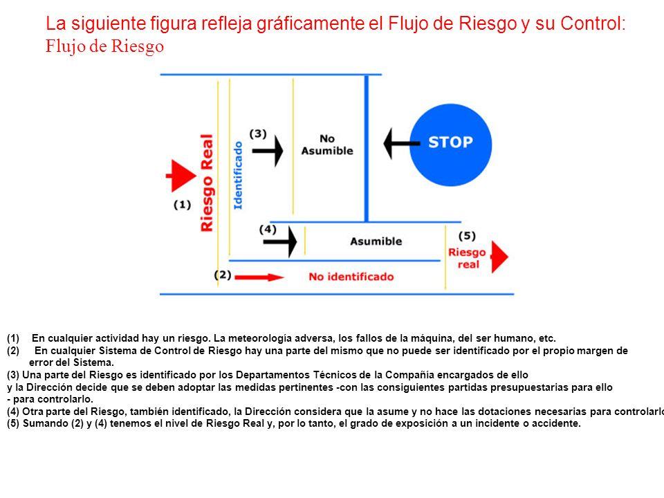 La siguiente figura refleja gráficamente el Flujo de Riesgo y su Control: