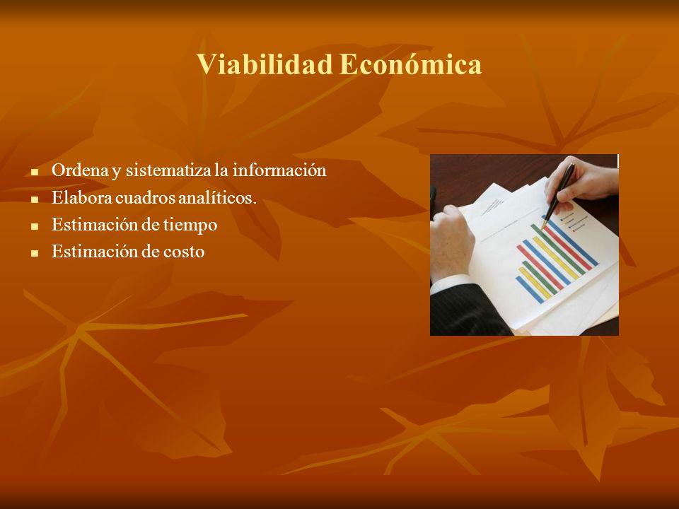 Viabilidad Económica Ordena y sistematiza la información