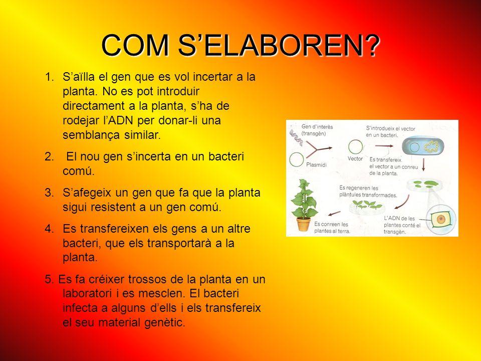 COM S'ELABOREN
