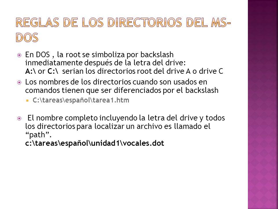 Reglas de los Directorios del MS-DOS