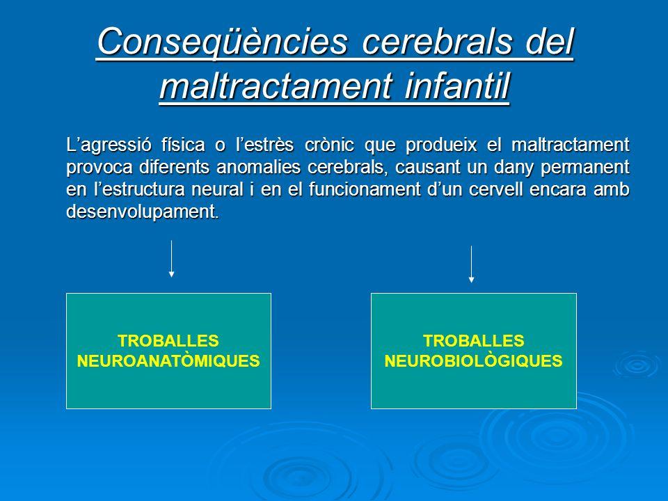 Conseqüències cerebrals del maltractament infantil