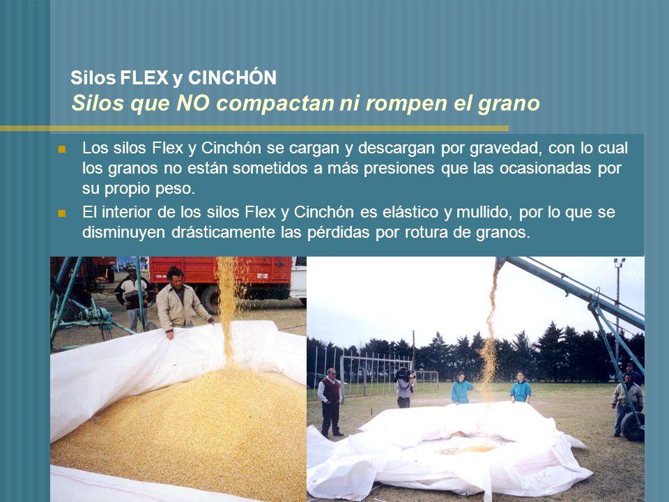 Un nuevo concepto en el almacenamiento de granos ppt for Vajillas que no se rompen