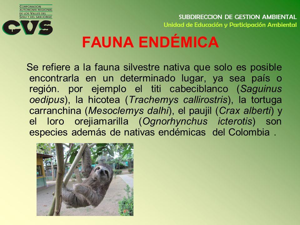 SUBDIRECCION DE GESTION AMBIENTAL Unidad de Educación y Participación Ambiental