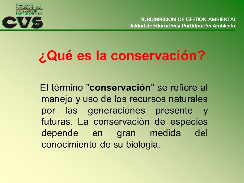¿Qué es la conservación
