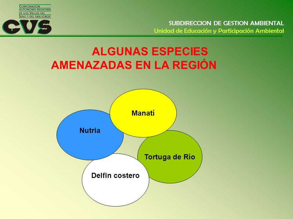 ALGUNAS ESPECIES AMENAZADAS EN LA REGIÓN