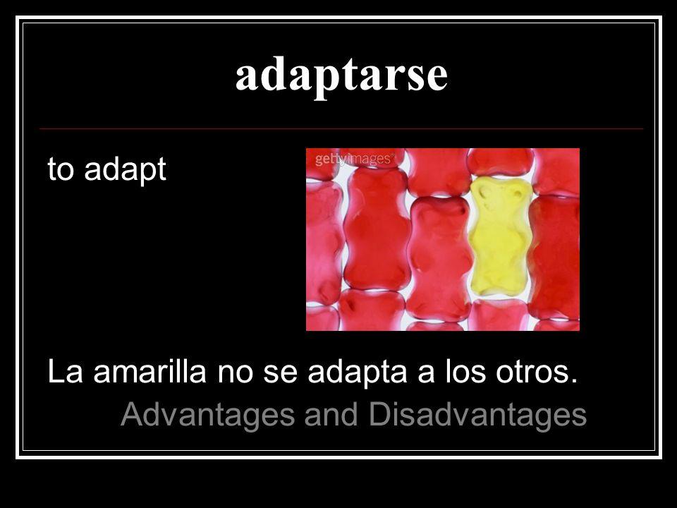 adaptarse to adapt La amarilla no se adapta a los otros.