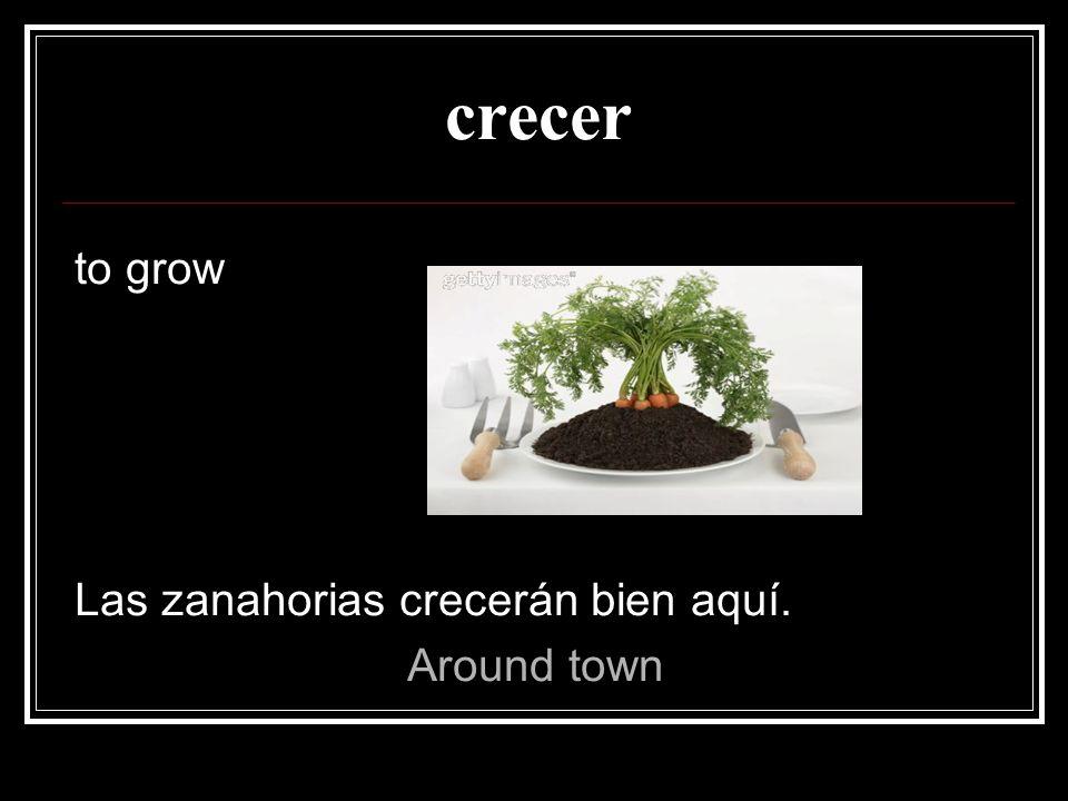 crecer to grow Las zanahorias crecerán bien aquí. Around town