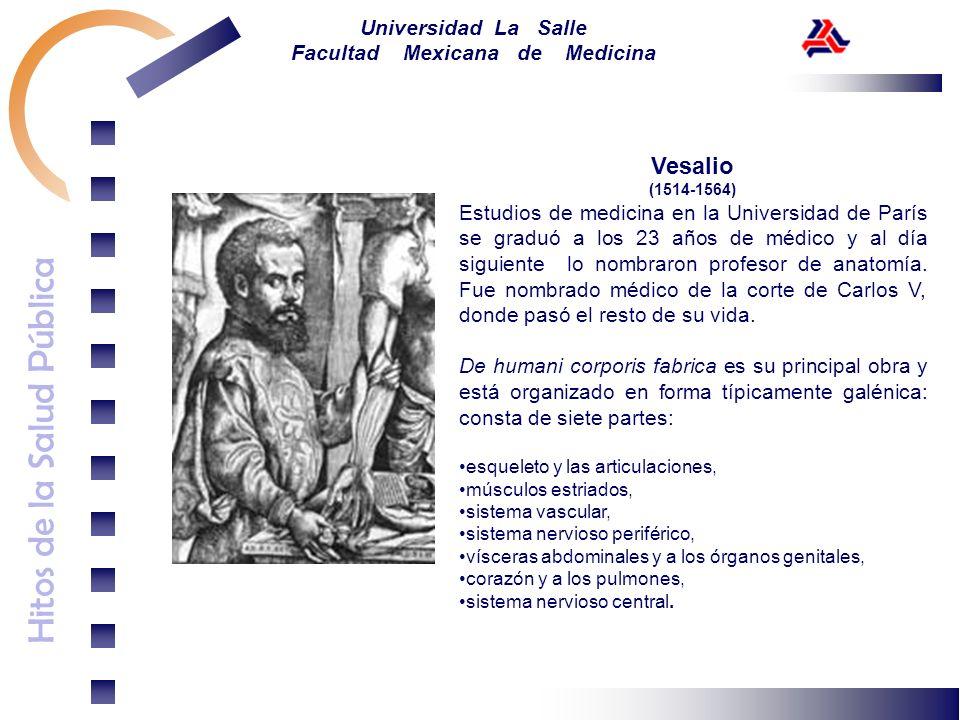 Vesalio(1514-1564)