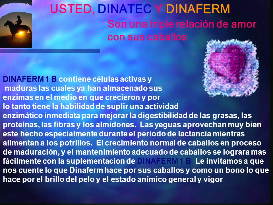 USTED, DINATEC Y DINAFERM