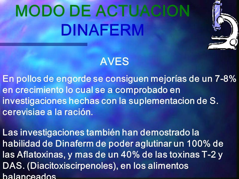 MODO DE ACTUACION DINAFERM