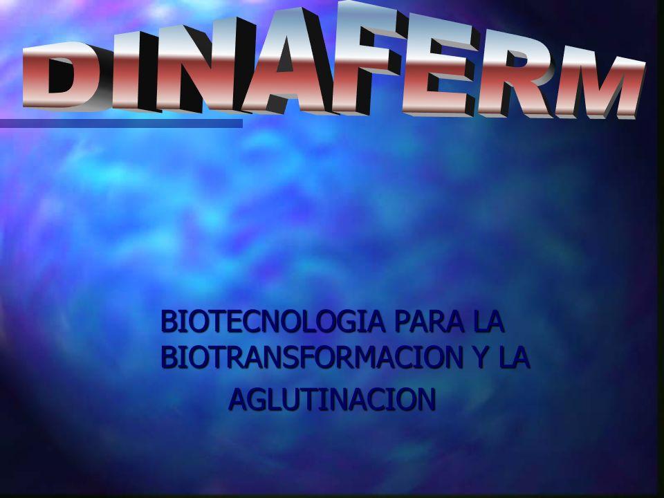 BIOTECNOLOGIA PARA LA BIOTRANSFORMACION Y LA