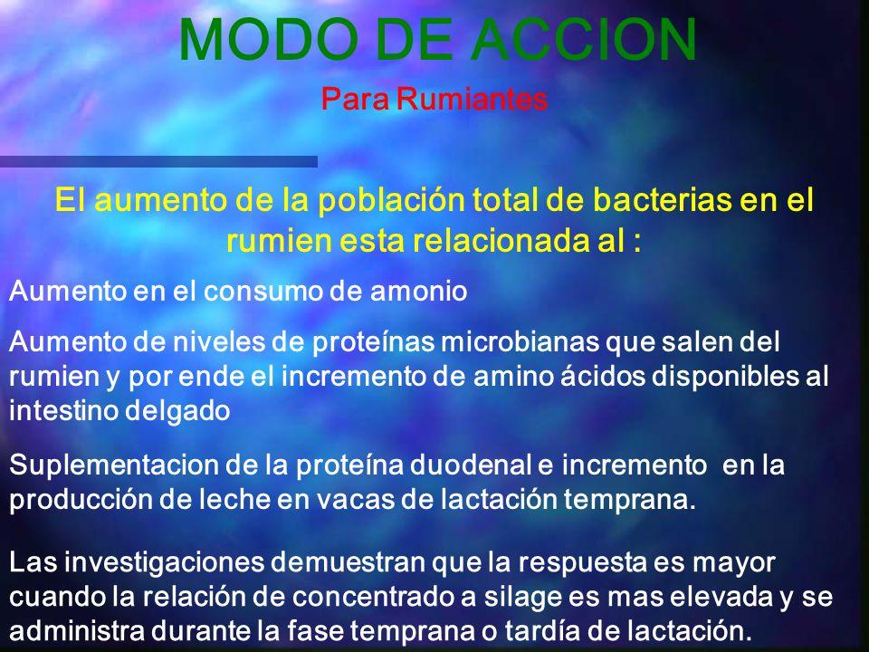 MODO DE ACCION Para Rumiantes. El aumento de la población total de bacterias en el rumien esta relacionada al :