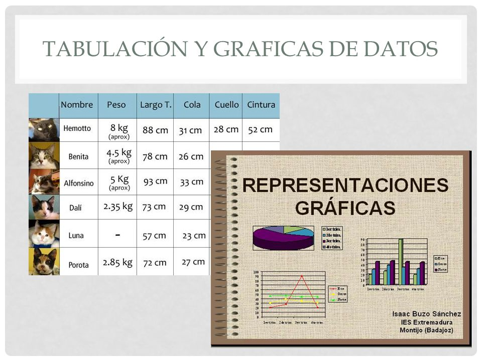Tabulación y graficas de datos