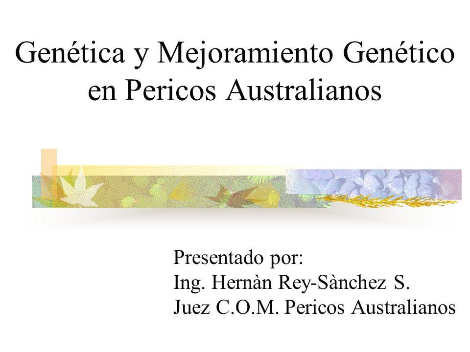 Genética y Mejoramiento Genético en Pericos Australianos