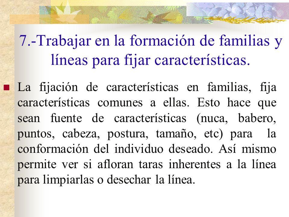 7.-Trabajar en la formación de familias y líneas para fijar características.
