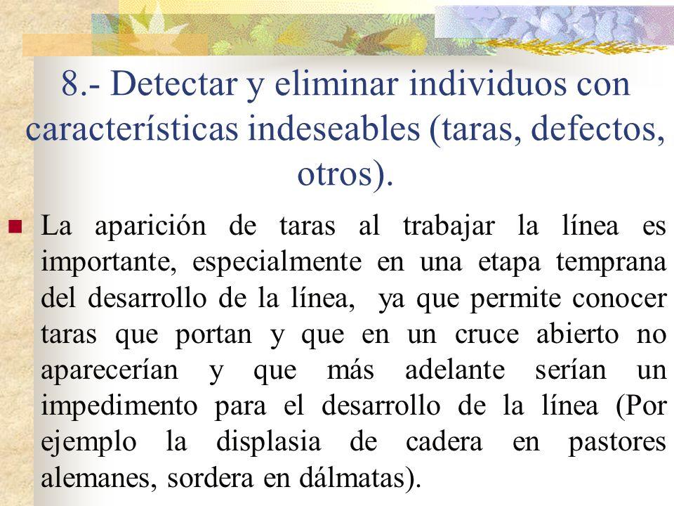 8.- Detectar y eliminar individuos con características indeseables (taras, defectos, otros).